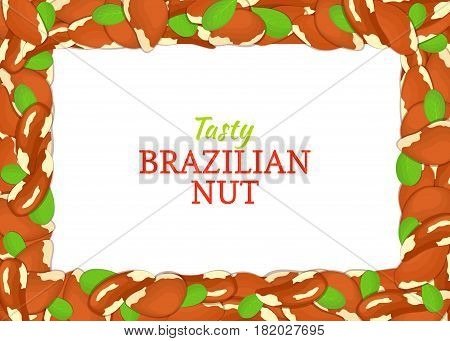 Horizontal Rectangle colored frame composed of delicious of brazilian nut. Vector card illustration. Nuts frame, brazilnut fruit in the shell, whole, shelled, leaves for packaging design of food