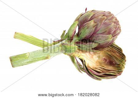 Fresh Artichoke Isolated
