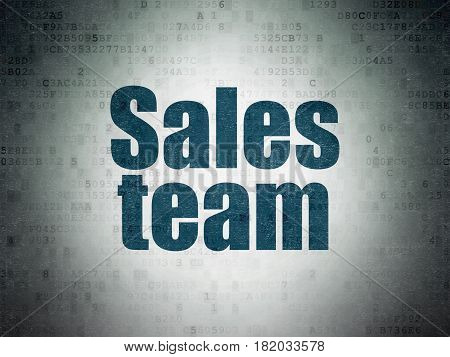 Advertising concept: Painted blue word Sales Team on Digital Data Paper background
