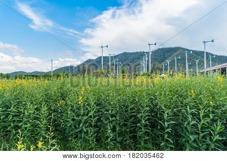 Chang Hua Mun Royal Initiative Project Windmills alternative and sustainability of enery from natural with farm land at Phetchaburi provinceThailand