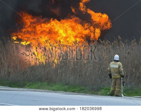 The fireman is looking at the big fire