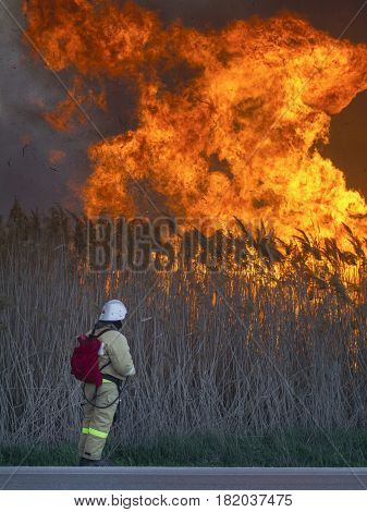 The fireman is looking at a huge fire