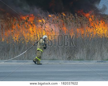 The firefighter drags to the fire a heavy hose