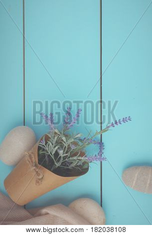 Stones and plant on the wooden background.