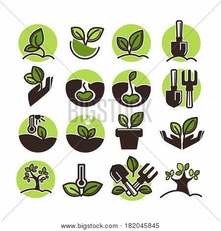 Tree planting and green horticulture or gardening logo or garden stickers templates. Vector icons of growing tree or plant leaf, seeds and farm spade and rake