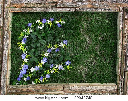 Picture Of Flowers On The Background Of Grass.