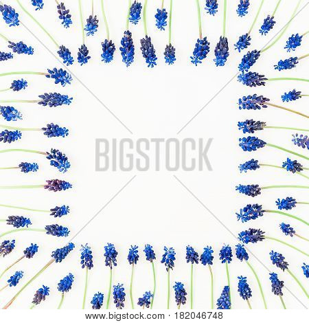 Frame made of blue muscari, floral pattern on white background. Flat lay, top view. Floral frame. Frame of flowers. Flowers frame wreath