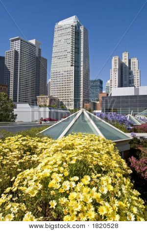 Skyscrapers With Flowers
