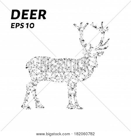 The Deer Consists Of Points, Lines And Triangles. The Polygon Shape In The Form Of A Silhouette Of A