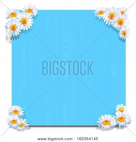 Vector Blue Wooden Board with Camomiles isolated on white background