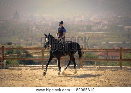 Jockey riding a thoroughbred horse on hippodrom