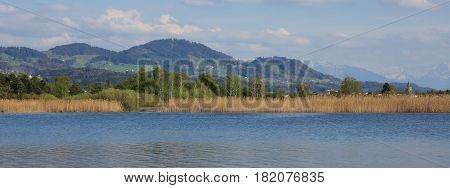 View from lake Pfaffikon towards Bachtel hill in Zurich Canton Switzerland. Spring scene.