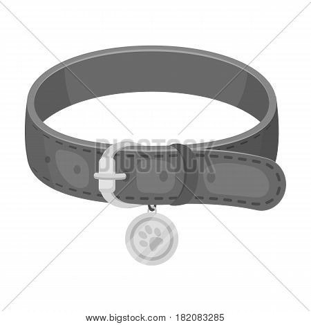 Collar with a medal for an animal.Pet shop single icon in black style vector symbol stock illustration .