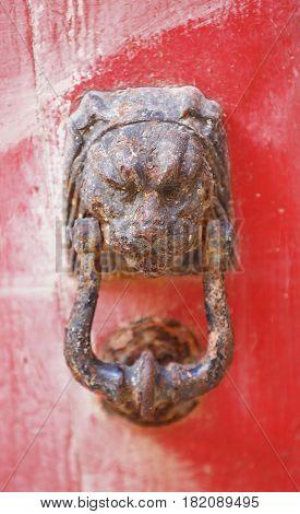door handle in the form of a lion on the red door