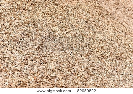 Maritime transportation industry. Wood chips and sawdust pile.