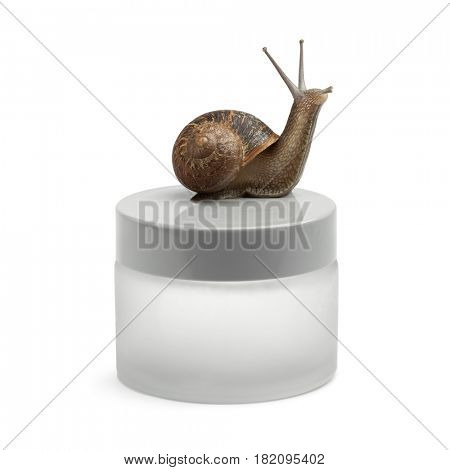 Snail-slime face cream with the snail on the pot