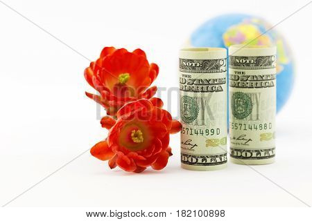 Selective focus on pair of red blossoms and American currency with unfocused globe in background suggests success with supportive strategies of global investments and worldwide business. Horizontal image with copy space.