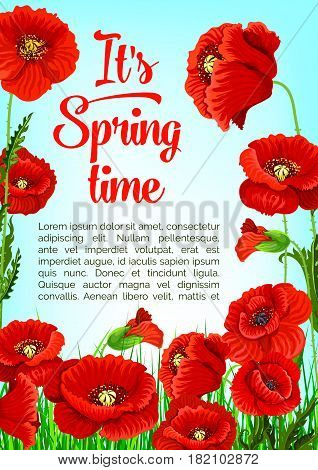 Spring Time quote poster with poppy flowers design for spring holiday seasonal greetings. Vector springtime blooming nature and flourish red flowers bunches on sunny green grass meadow