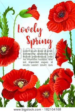 Spring poppy flowers blossoms and buds in bloom for vector greeting card or poster design. Blooming green nature fields of red flourish flowers for springtime seasonal holidays floral template