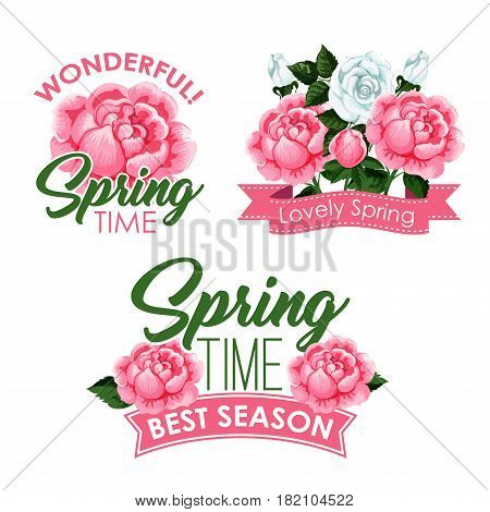 Springtime season greeting quotes with roses bouquets and flowers wreath design. Blooming pink and white blooming roses and flourish bunches with ribbons. Vector isolated icons templates set