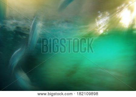 rays of sunlight shining into sea blurred fish swimming against blue sea abstract nature background