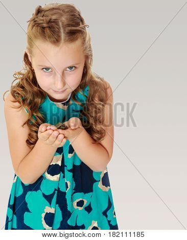 Beautiful little girl holding hands the little turtle. Close-up.On a gray background.