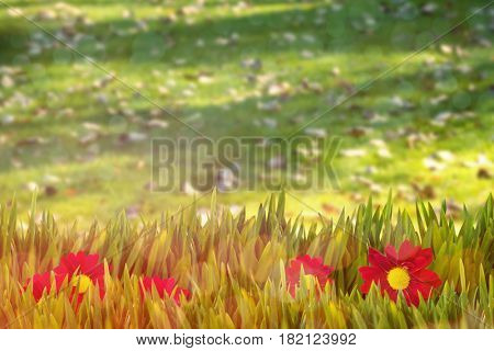Picture of a flower against dried leaves fallen in grass