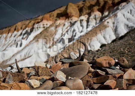 Kailash Yatra travel to TIBET China Kailas - the holiest mountain of Tibet.