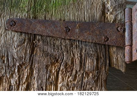 Texture background. Old wood boards with old nails