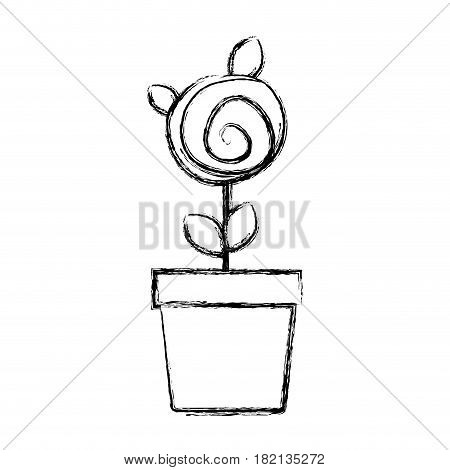 blurred silhouette drawing small rose with leaves and stem in flowerpot vector illustration
