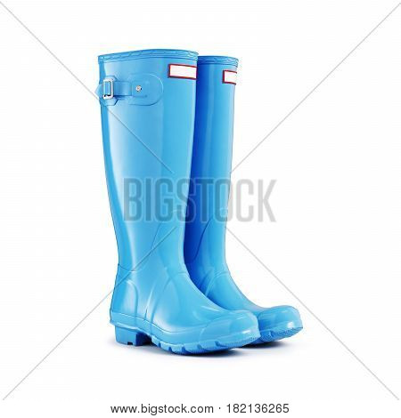Blue Rubber Boots Isolated On White Background. Rubber Shoes