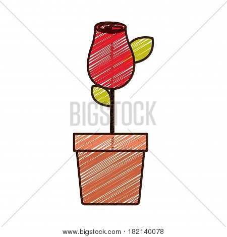 color pencil drawing of red rosebud with leaves and stem in flowerpot vector illustration