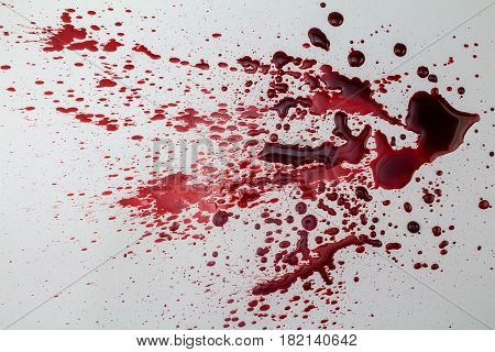 Splattered blood stain isolated on white background - photo