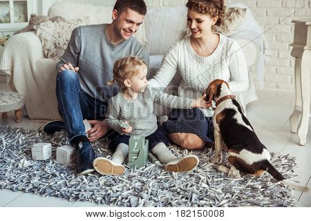 happy parents and five year old daughter playing with a pet dog in the spacious living room on Sunday