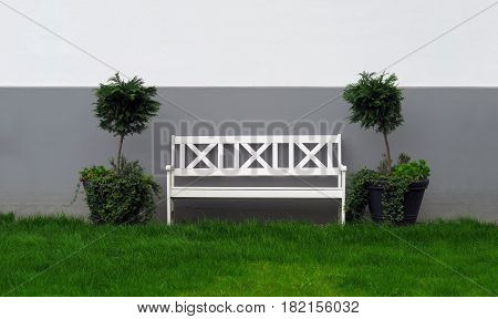 white wooden garden bench in front of wall with plants