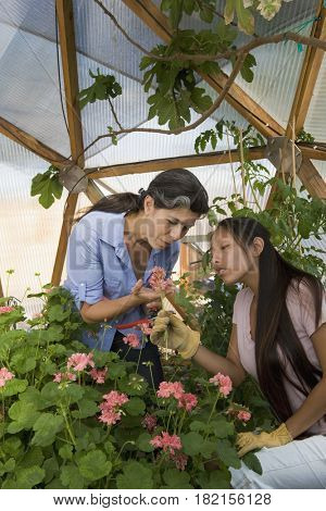Mother and daughter gardening in conservatory