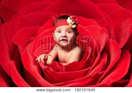 Portrait of adorable baby girl, peeping out of rose