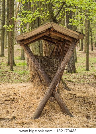Wooden feed rack for animals in forest