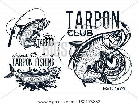 Vintage tarpon fishing emblems, labels and design elements