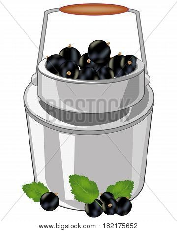 Capacity of the full ripe berry currant on white background