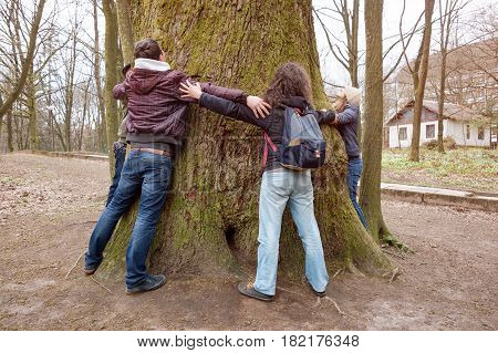 Group of friends hugging giant tree trunk and holding hands during hiking excursion. Tree hugging, tourism, ecology, nature support and friendship concept.