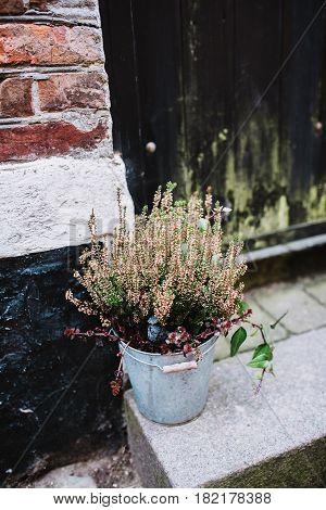 Flower bouquet in front of vintage doors in Denmark