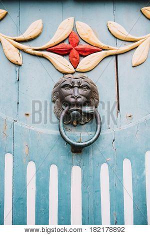 Metal lion door knocker on a wooden door