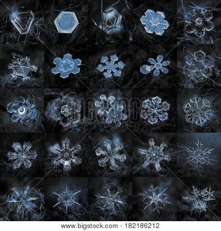 Collage with 25 real snowflake macro photos, arranged in square grid 5 x 5 tiles. Snow crystals was captured at dark woolen background in natural light of cloudy sky.