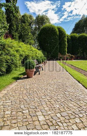 stone stairway in a park with boxwood bucket