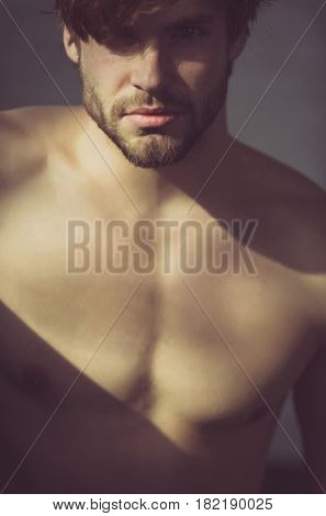 Handsome man with beard or sexy muscular macho athlete with sunlight on fit naked torso on grey background. Blond hair and bearded unshaven face skin. Male beauty and fitness