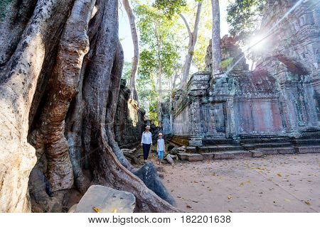 Family visiting ancient Ta Prohm temple in Angkor Archaeological area in Cambodia