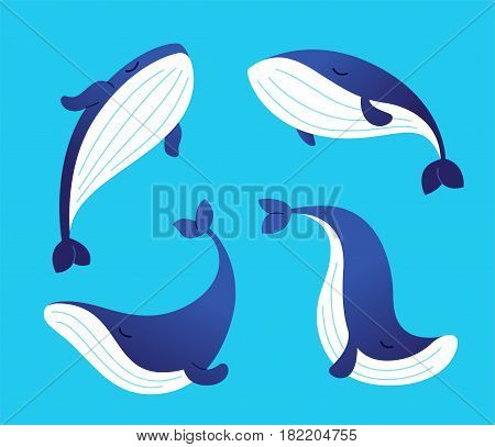 Whale - modern vector template set of flat cartoon see creature characters. Gift images of whale swimming, smiling, sleeping.