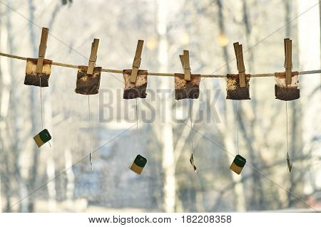 Used tea bags drying on the clothesline with clothes pegs
