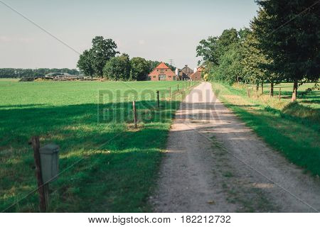 Driveway To Old Farmhouse In Rural Landscape In Summer.